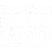 How much does a polar bear weight
