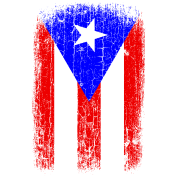 Vintage Puerto Rico Flag