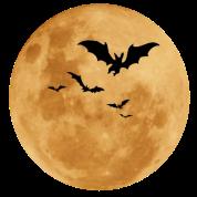 Halloween Moon T-Shirt | Spreadshirt