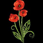 Summer flower red poppies flower by christine krahl spreadshirt red poppies flower mightylinksfo