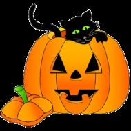 HALLOWEEN PUMPKIN WITH BLACK CAT