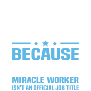 travel agency manager - Agency Manager
